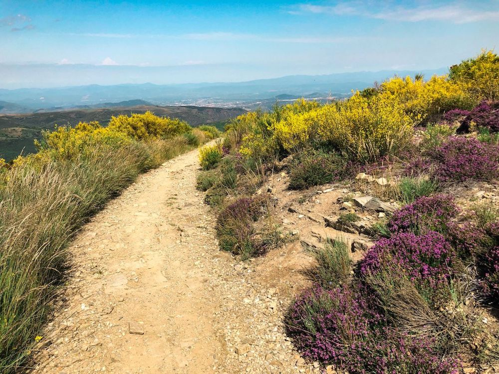 Walking the Camino de Santiago - photo by Love At First Adventure