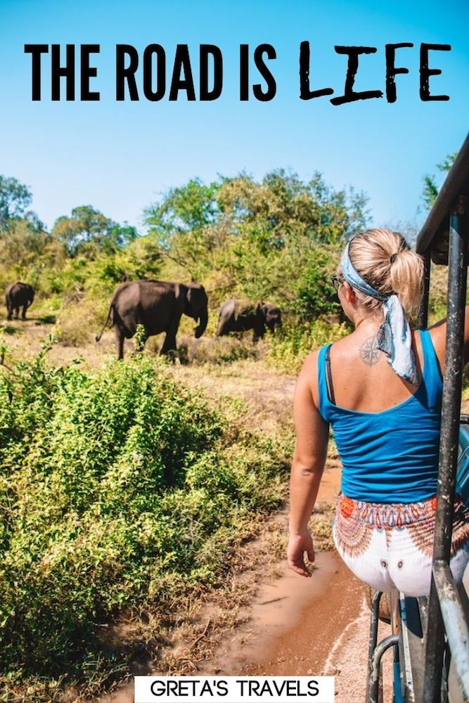 """Photo of a blonde girl hanging out of a jeep watching wild elephants with text overlay saying """"The road is life"""" - a perfect travel quote for instagram captions"""