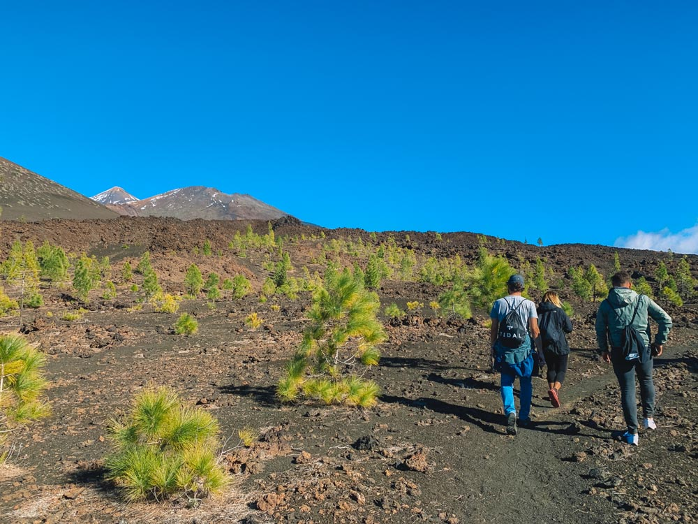 Hiking the Montana Samara Circuit Trail in Tenerife, with Teide views in the distance