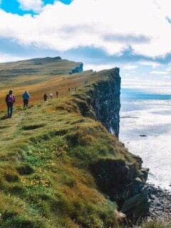 Latrabjarg cliffs - a must see in many Iceland tours
